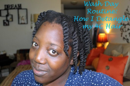 Qhemet Biologics, Natural Hair Blog, Natural Hair, Detangling Hair, 4c Hair, Kinky Hair, Wash Day, Routine